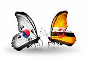 Two Butterflies With Flags On Wings As Symbol Of Relations South Korea And Brunei