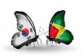 Two Butterflies With Flags On Wings As Symbol Of Relations South Korea And Guyana