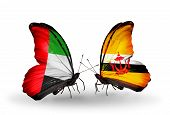 Two Butterflies With Flags On Wings As Symbol Of Relations Uae And Brunei