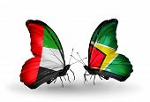 Two Butterflies With Flags On Wings As Symbol Of Relations Uae And Guyana