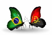 Two Butterflies With Flags On Wings As Symbol Of Relations Brazil And Angola