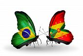 Two Butterflies With Flags On Wings As Symbol Of Relations Brazil And Grenada