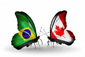 Two Butterflies With Flags On Wings As Symbol Of Relations Brazil And Canada