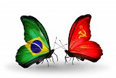 Two Butterflies With Flags On Wings As Symbol Of Relations Brazil And Soviet Union