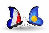 Two Butterflies With Flags On Wings As Symbol Of Relations France And Palau