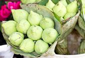 Green Lotus Bunch Wrap By Lotus Leaves In Market.