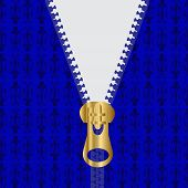 pic of zipper  - Zippered Blue Sweater With a Gold Zipper  - JPG