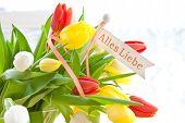 Fresh Bouquet Of Tulips