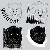 image of panther  - logo with the image of a black panther - JPG