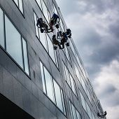 Climbers washing windows of a modern high-rise building