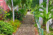 The 99 steps in Charlotte Amalie St Thomas US VI.