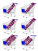 Blue 3D Shopping Cart With Luxury Articles Texts