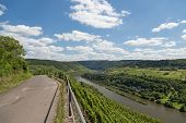 image of moselle  - Country road and Vineyards along German river Moselle near Zell - JPG