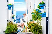 image of flower pot  - Picturesque street of Mijas with flower pots in facades - JPG
