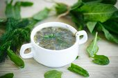 image of sorrel  - Sorrel soup with egg and greens in a plate - JPG