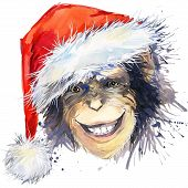 Постер, плакат: Monkey Santa Claus T shirt graphics monkey year illustration with splash watercolor textured backgr