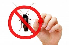 picture of pest control  - Hand drawing pest control concept with red marker - JPG