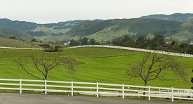 foto of long winding road  - Country road with long white picket fence - JPG