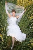 Bride In A Green Wheat
