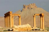 picture of euphrat  - ruins of historic temple at ancient palmyra in syria - JPG