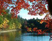 Autumn At Walden Pond Variation