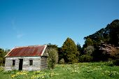 Abandoned farmhouse.