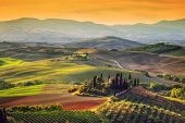 Tuscany landscape at sunrise. Typical for the region tuscan farm house, hills, vineyard. Italy poster