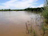 Zonas húmidas de Rio Grande