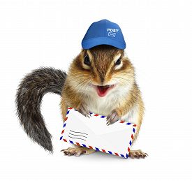 picture of chipmunks  - Funny postman chipmunk with air mail letter on white - JPG