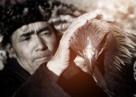 pic of mongolian  - Mongolian Man Trained Eagle Kazakh Olgei Western Concept - JPG