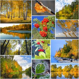 foto of siberia  - Collage of nature photos of Siberia in Russia in the autumn - JPG