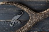 Knife Multifunctional Tool And Deer Horn. poster