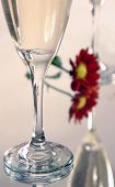 parts of two champagne glasses on a mirror with a flower,front glass is sharper than the background