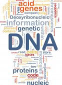 stock photo of mitochondria  - Background concept wordcloud illustration of DNA genetic information - JPG