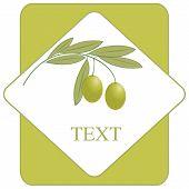 Label Olive
