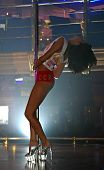 image of pole dancer  - The girl dances with a stick - JPG