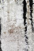 defaced ancient culture wall with carved graffiti in Ephesus, Turkey