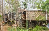 2 Exterior House Design By Wood And Concrete In Country Style. Exterior House Among Natural Forest.  poster