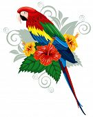 image of parrots  - Bright parrots sitting on a branch with tropical flowers - JPG