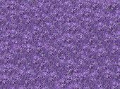 Abstract Lilac Flower Background.