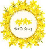 Feel The Spring. Forsythia Suspensa Frame. Card Template. Round Circle Badge. Blossoming Yellow Bran poster