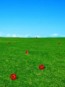 Gaming Dice In Grassy Field