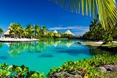 Tropical resort with a green lagoon and many palm trees