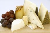 image of cheese platter  - An assortment of cheeses on a cheese - JPG