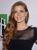 LOS ANGELES - OCT 22:  Amy Adams arrives to Hollywood Film Awards Gala 2012 on October 22, 2012 in Beverly Hills, CA