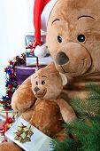 Teddy bears at Christmas