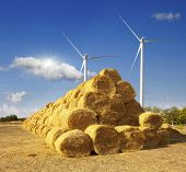 stock photo of haystack  - Haystacks on the field - JPG