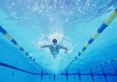 stock photo of arms race  - Underwater shot of male swimmer swimming in pool - JPG