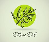 Hand-drawing Olive