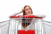 Housewife Choosing Shopping